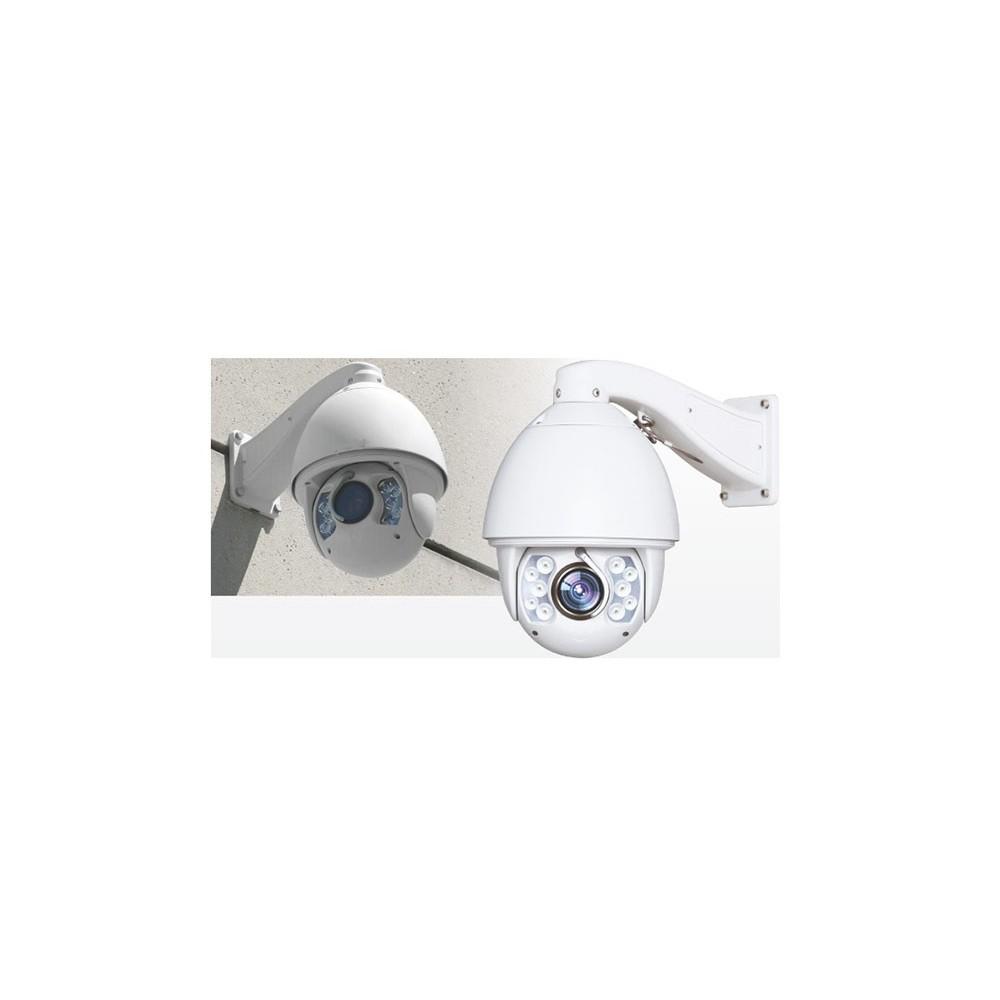 dome globe de surveillance motorisé seul