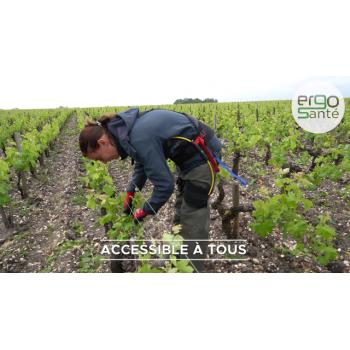 Exosquelette HAPO mal de dos ERGO SANTE I Sécurama pour la viticulture